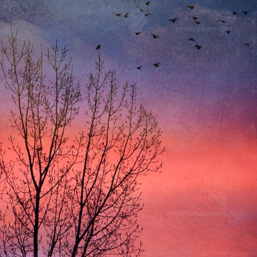 Sherbet Sky-Watermark